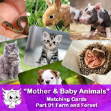 Mother & Baby Animals - Matching Cards. Farm and Forest #01
