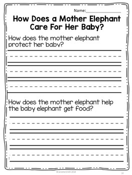 Mother Elephant Caring for Her Baby Science Reading 1st