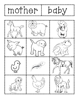 Mother and Baby Animal's Sort
