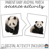Matching Mother and Baby Animals w/ Real Photographs Science Centers Montessori