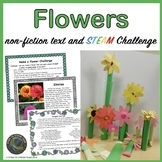 Mother's Day! Flowers Reading, Poem Writing,  & Create a F