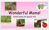 Mother's Day in the Animal Kingdom