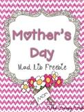 Mother's Day Mad Lib *Freebie*