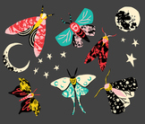Moths, Moth Clipart, Moth Clip art, Moon Clipart, Insect Clipart