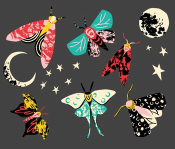 Moths, Moth Clipart, Moth Clip art, Moon Clipart, Insect Clipart