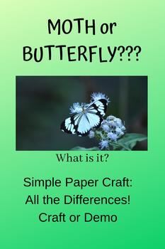 Moths and Butterflies: paper craft
