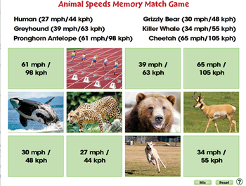 Motion: Memory Match Game - NOTEBOOK Gr. 5-8