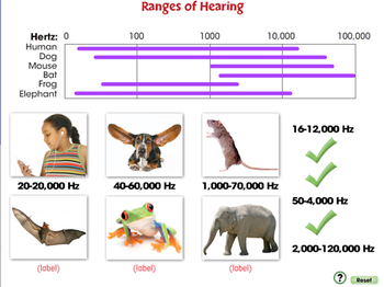 Motion: Ranges of Hearing - PC Gr. 5-8