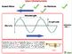 Motion: Wave Motion - NOTEBOOK Gr. 5-8
