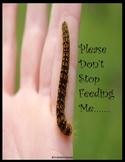 Motivational Miniposters for Educators!!!