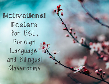Motivational Posters for ESL, Foreign Language, and Bilingual Classrooms