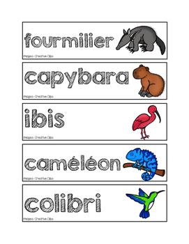 Mots-étiquettes des animaux de la jungle