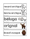 Mots-étiquettes des animaux polaires