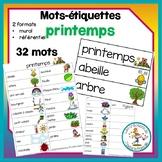 Mots-étiquettes - printemps / word wall - spring