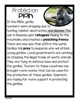 Mountain Gorilla-A Research Project