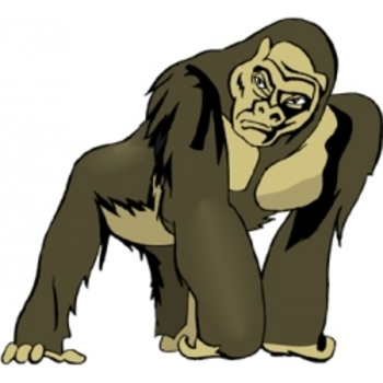 Mountain Gorillas in Danger  - Text and Exercise Sheets