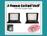 Mouse Called Wolf--QAR Comprehension Questions
