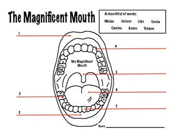 picture about Dental Health Printable Activities named Mouth Dental Conditioning Stunning Mouth Worksheet