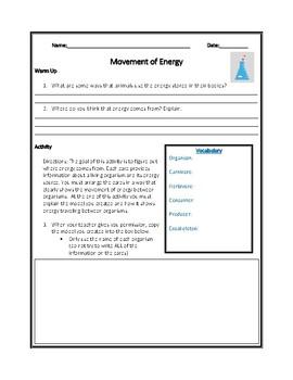 Movement of Energy NGSS Mini-Unit