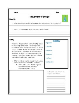 Movement of Energy NGSS Mini-Unit (Extension)