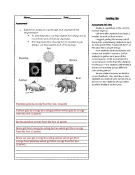 Movement of Energy NGSS Mini-Unit Teaching Guide