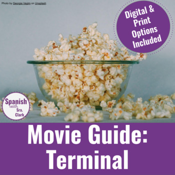 Movie Guide: Terminal