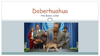 MovieTalk - Doberhuahua