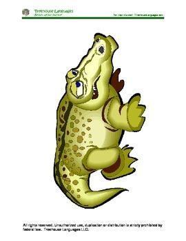 Mr. Alligator: Sr. Caimán