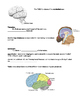 Mr. Anderson guided notes on The Brain