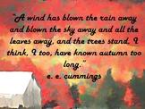 Mr. B's Quotes of Autumn