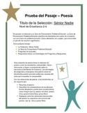 Mr. Nobody Poem: Spanish Test Prep