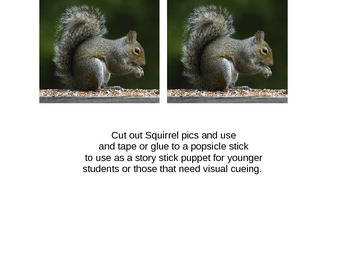 Mr. Squirrel, Mr.  Squirrel, What Do You See?