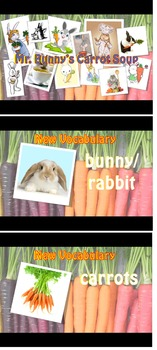 Mrs. Baia's Mr.Bunny's Carrot Soup ESL Camp Plan