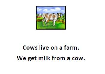 Mrs. Romano's Farm