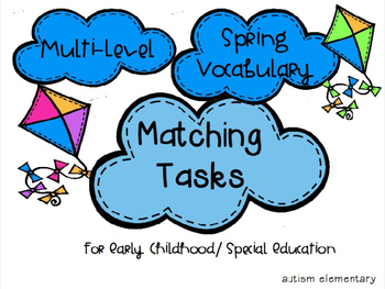 Multi-Level Spring Vocabulary Matching Tasks