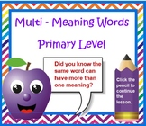 Multi-Meaning Words Primary Level