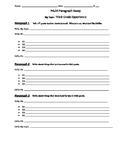 Multi Paragraph Essay Graphic Organizer