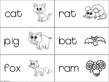 Multi-Sensory Grammar Word Wall Cards: Animal Nouns and Verbs