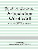 No Prep Multi-Sound Articulation Word Lists (Mint Theme)