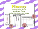 Multi-Syllable Word Fluency: Vowel Teams on the End:Level 4 Lesson 13