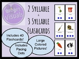 Multi-syllabic Word Flash Cards (2 & 3 syllable words)