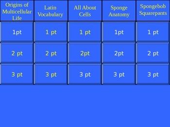 Multicellularity & Phylum Porifera (Sponges) Jeopardy PowerPoint