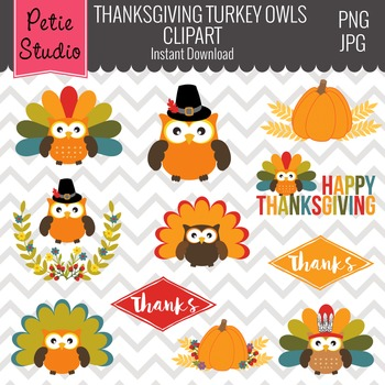 Multicolor Feathers Turkey Owl Clipart, Thanksgiving Owls Clipart - FALL106