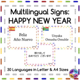 Multilingual Happy New Year Posters for Classroom Decor: C