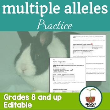 Genetics: Multiple Alleles Worksheet