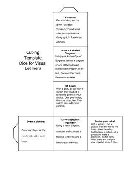 Multiple Intelligences Cubing Strategy