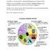 Multiple Intelligences Presentation Project