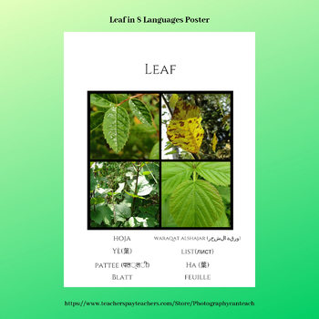 Leaf In Eight Languages Poster with Nature Photography