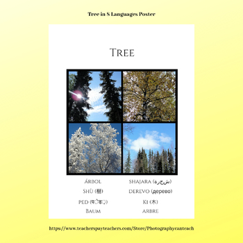 Tree In Eight Languages Poster with Nature Photography