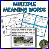 Multiple Meaning Words Activities and Assessments